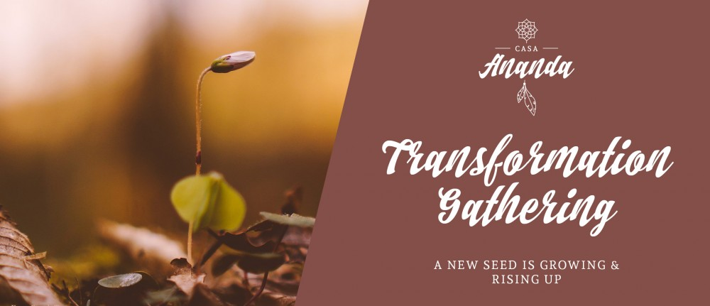 TRANSFORMATION GATHERING – a new seed is growing&rising up