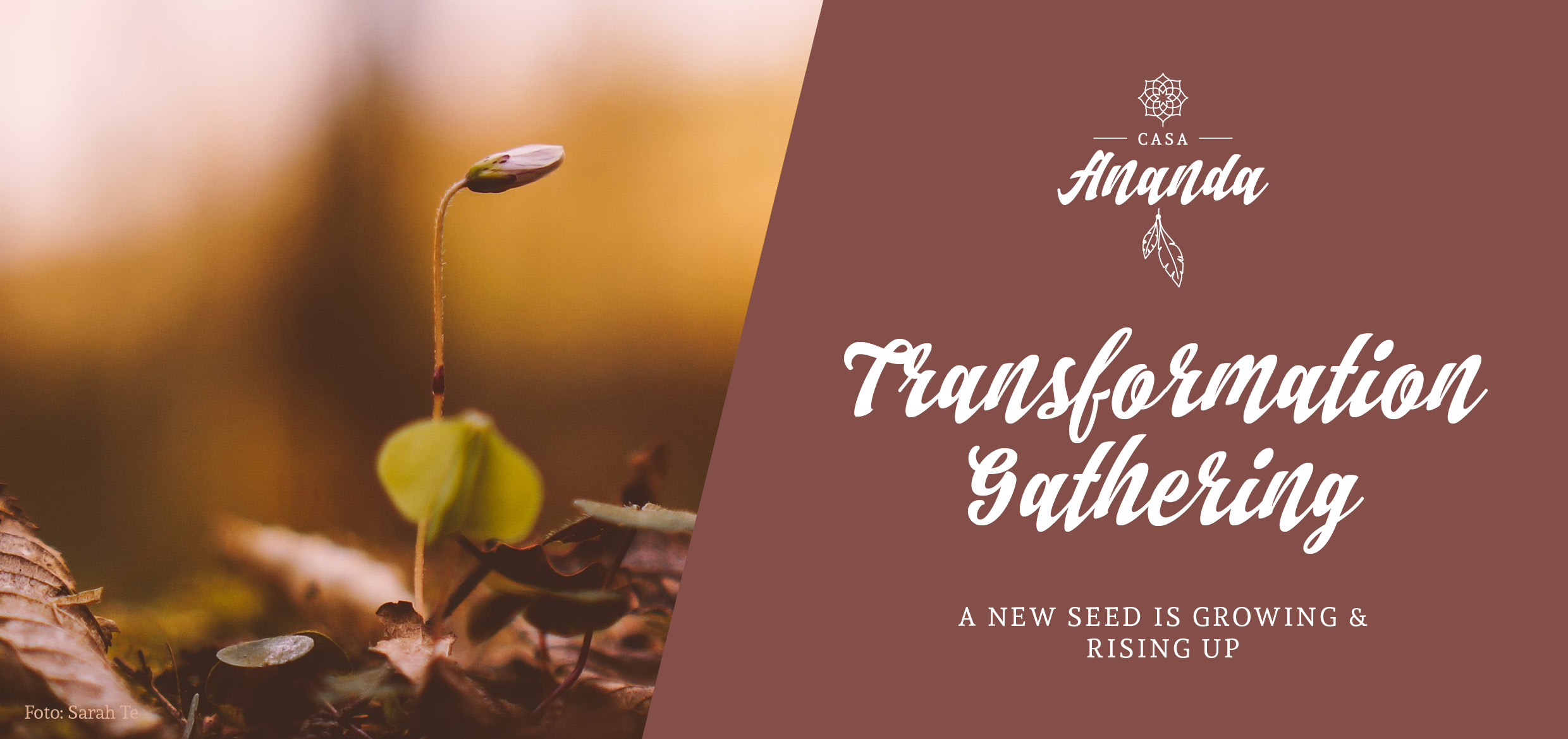 Transformation Gathering - a new seed